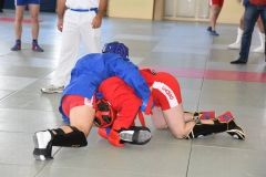 Lupta corp la corp din cadrul Spartachiadei CSC Dinamo 201860